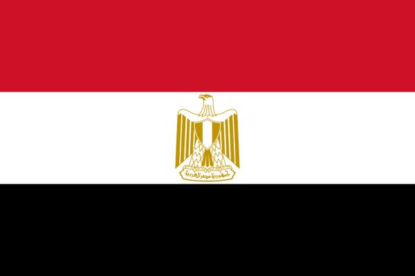 مصر.. القضاء على 16 إرهابي في سيناء