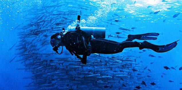بدلة سباحة مضادة لسمكة القرش