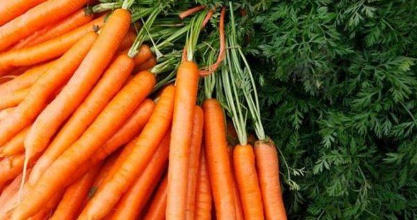 أكلات ينصح أن تقدم ساخنة لكي تحظى بالفوائد