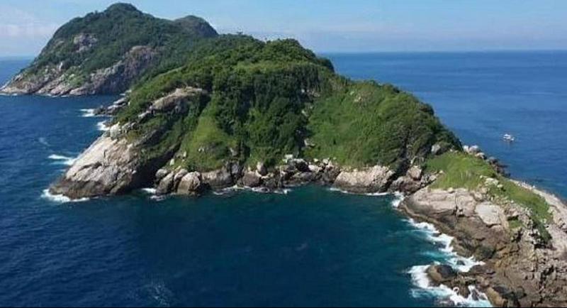 """تعرف على """"جزيرة الأفعى"""" المكان الجميل الذي لن تزوره أبدا"""